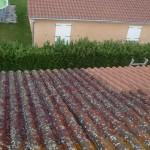 Nettoyage tuile béton en cours - Rhône