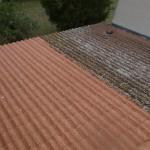 Nettoyage tuile béton après attaque lichen