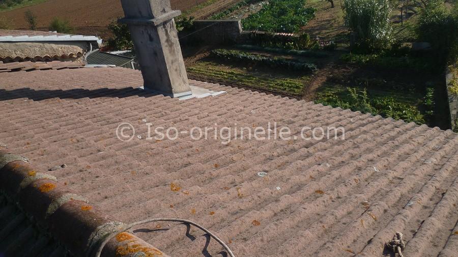 Nettoyage toiture en cours